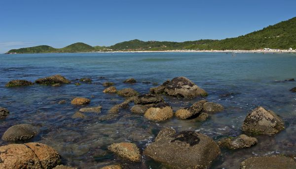 Praia do Rosa - Santa Catarina